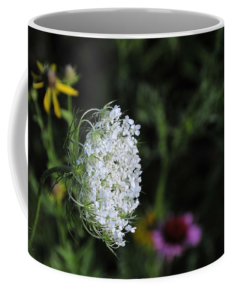 Flower Coffee Mug featuring the photograph Queen Anns Lace by David Arment