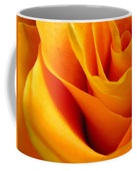 Rose Coffee Mug featuring the photograph Queen Rose by Rhonda Barrett