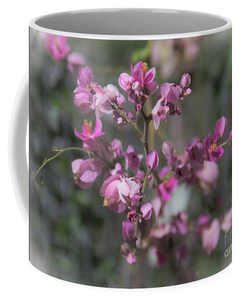 Queens Jewels Coffee Mug featuring the photograph Queen's Jewels by Amy Sorvillo