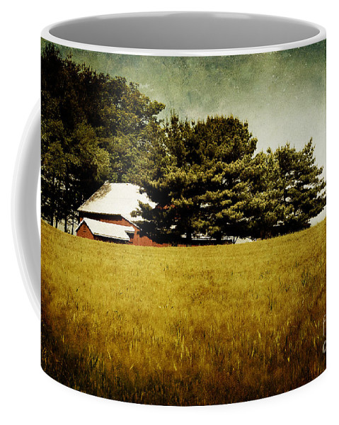 Barn Coffee Mug featuring the photograph Quiet by Lois Bryan