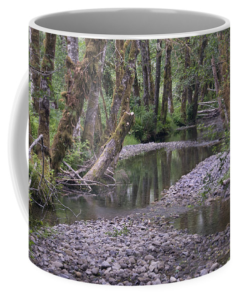 Quinault Coffee Mug featuring the photograph Quinault Rain Forest 3147 by Bob Neiman
