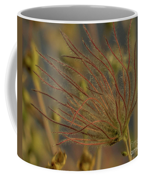 Red Coffee Mug featuring the photograph Quirky Red Squiggly Flower 4 by Christy Garavetto
