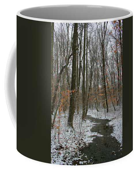 Forest Woods Water Winter Tree Snow Cold Season Nature Coffee Mug featuring the photograph Quite Path by Andrei Shliakhau