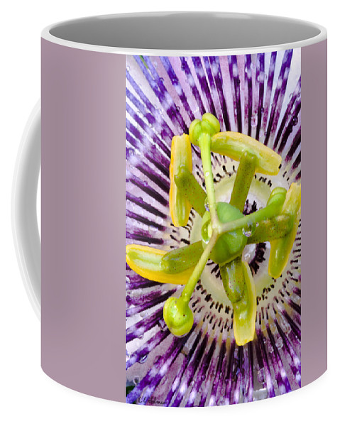 Passion Coffee Mug featuring the photograph Radial Arms by Christopher Holmes