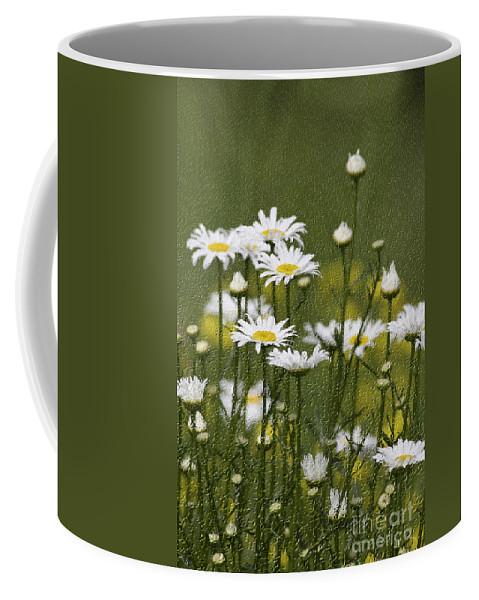 Craquelure Coffee Mug featuring the photograph Rain Drops On Daisies by Deborah Benoit