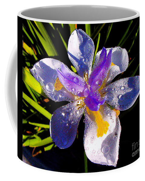 Flower Coffee Mug featuring the photograph Rain Flower Morning by Jerome Stumphauzer