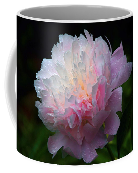 Peony Coffee Mug featuring the photograph Rain-kissed Peony by Byron Varvarigos