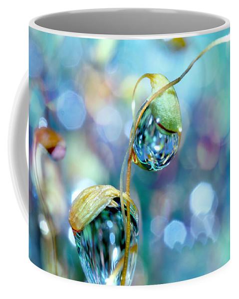 Moss Coffee Mug featuring the photograph Rainbow Moss Drops by Sharon Johnstone