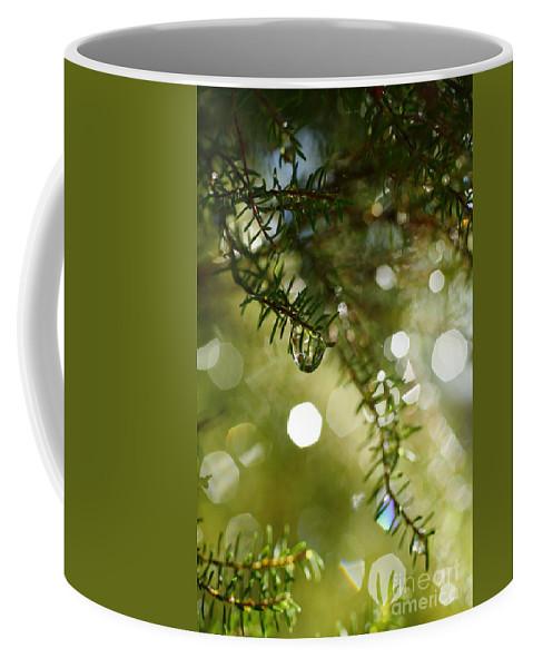 Dew Coffee Mug featuring the photograph Raindrops by Gaspar Avila