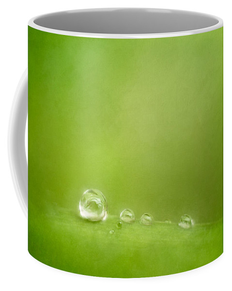 Water Drops Coffee Mug featuring the photograph Raindrops On Green by Scott Norris