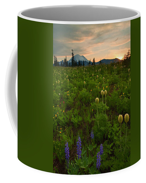 Meadow Coffee Mug featuring the photograph Rainier Wildflower Light by Mike Dawson