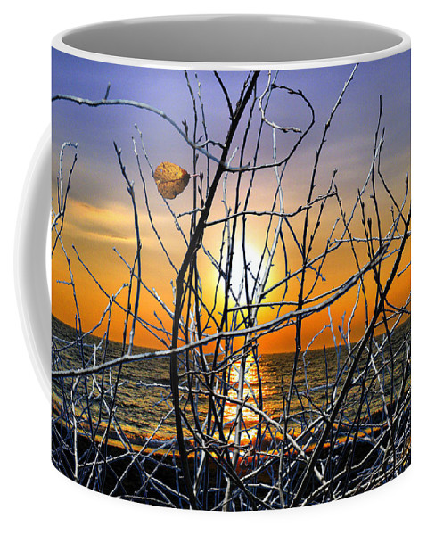 Photo Coffee Mug featuring the photograph Raising Branches by Munir Alawi