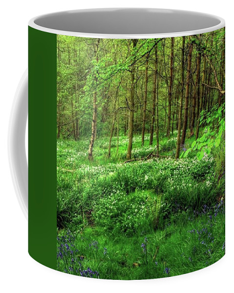 Nature Coffee Mug featuring the photograph Ramsons And Bluebells, Bentley Woods by John Edwards