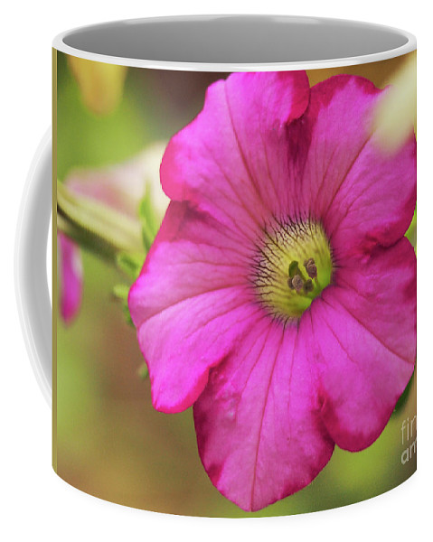 Flowers Coffee Mug featuring the photograph Raspberry Blast On A Brilliant Summer Day by Dorothy Lee