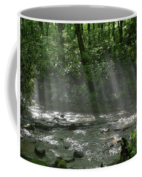 Mingus Coffee Mug featuring the photograph Rays Through The Trees by Pat Turner