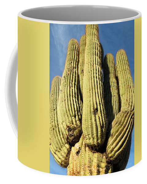 Cactus Coffee Mug featuring the photograph Reaching For The Sky by Laurel Powell