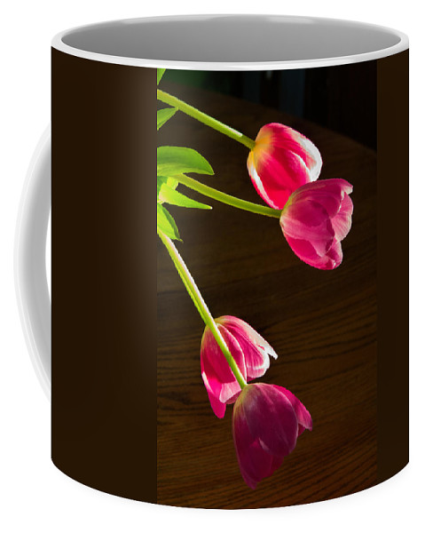 Nature Coffee Mug featuring the photograph Reaching For The Sun by Alana Thrower