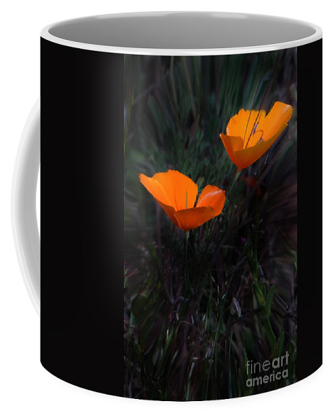 California Scenes Coffee Mug featuring the photograph Reaching For The Sun by Norman Andrus