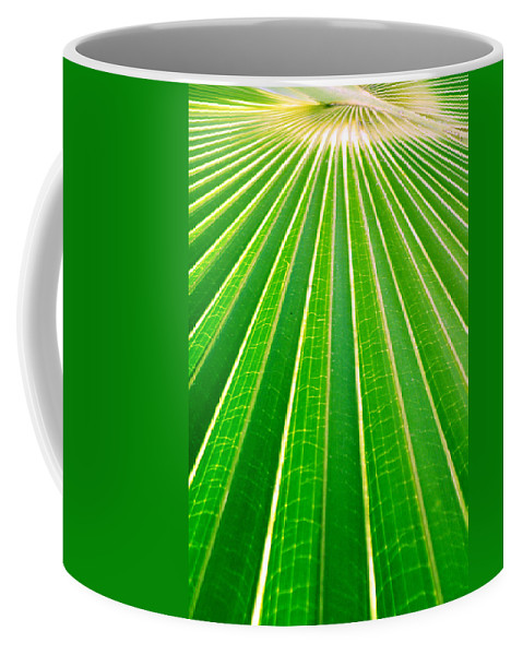 Nature Coffee Mug featuring the photograph Reaching Out by Holly Kempe