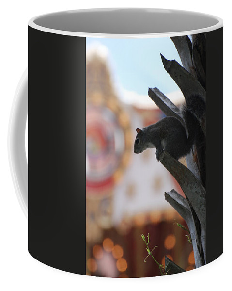 Squirrel Coffee Mug featuring the photograph Ready To Jump by Rob Hans
