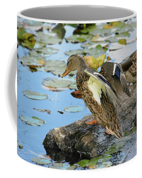 Nature Coffee Mug featuring the photograph Ready To Plunge by Vivian Martin