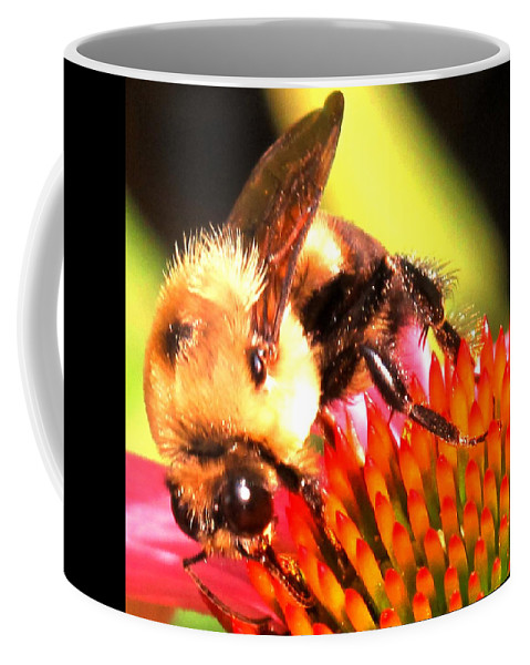 Bee Coffee Mug featuring the photograph Really Getting Into It by Ian MacDonald