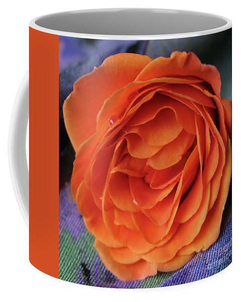 Rose Coffee Mug featuring the photograph Really Orange Rose by Ann Horn