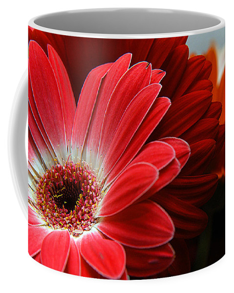 Clay Coffee Mug featuring the photograph Red And Orange Florals by Clayton Bruster