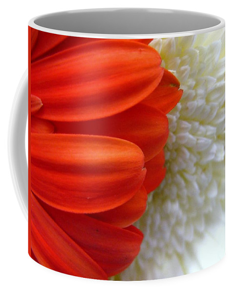 Flowers Coffee Mug featuring the photograph Red And White by Rhonda Barrett