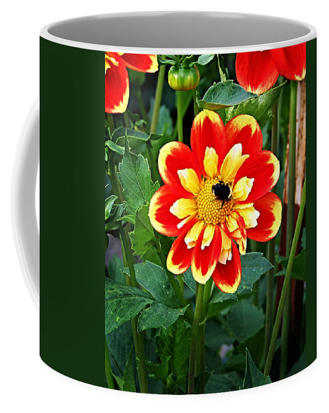 Flower Coffee Mug featuring the photograph Red And Yellow Flower With Bee by Anthony Jones