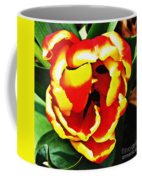 Tulip Coffee Mug featuring the photograph Red And Yellow Tulip by Sarah Loft