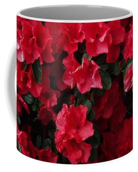 Red Coffee Mug featuring the photograph Red Azalea Blooms by Scenic Sights By Tara