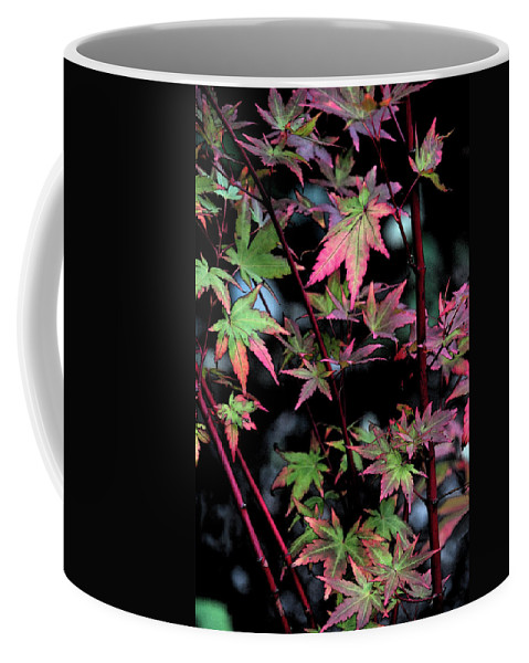 Red Coffee Mug featuring the photograph Red Bark Maple by Carol Eliassen