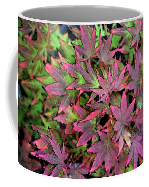 Garden Coffee Mug featuring the photograph Red Bark Maple Leaves by Carol Eliassen