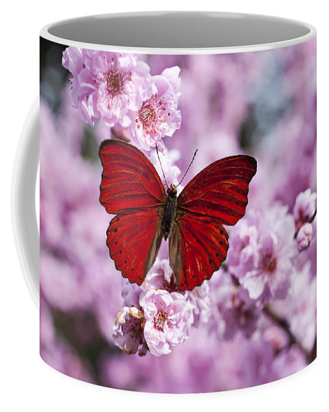 Red Coffee Mug featuring the photograph Red Butterfly On Plum Blossom Branch by Garry Gay