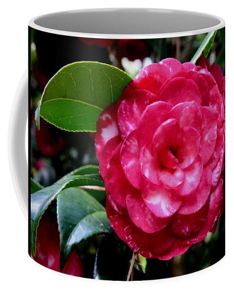 Red Camellia Coffee Mug featuring the photograph Red Camellia by Erin O'Neal-Morie