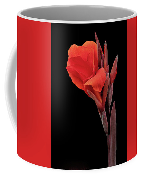 Canna Flowers Coffee Mug featuring the photograph Red Canna by Floyd Hopper