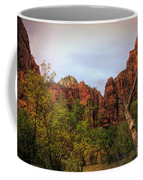 Zion National Park Coffee Mug featuring the photograph Red Cliffs Mountains Zion National Park Utah Usa by Chuck Kuhn