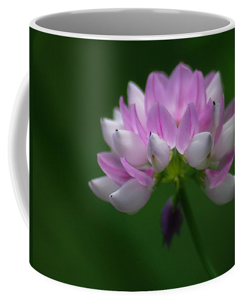 Jenny Gandert Coffee Mug featuring the photograph Red Clover by Jenny Gandert