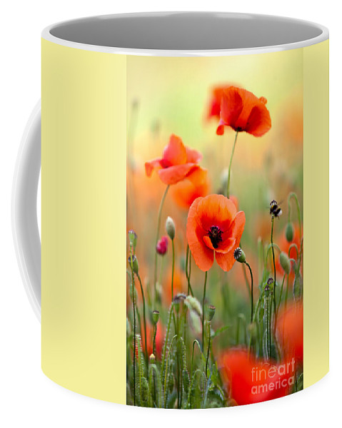 Poppy Coffee Mug featuring the photograph Red Corn Poppy Flowers 06 by Nailia Schwarz