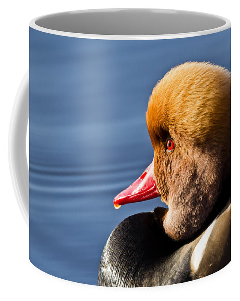 Red Coffee Mug featuring the photograph Red Crested Pochard Portrait by Chris Whittle