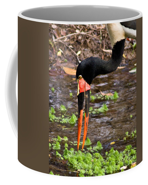 Red Coffee Mug featuring the photograph Red-crowned Crane by Douglas Barnett