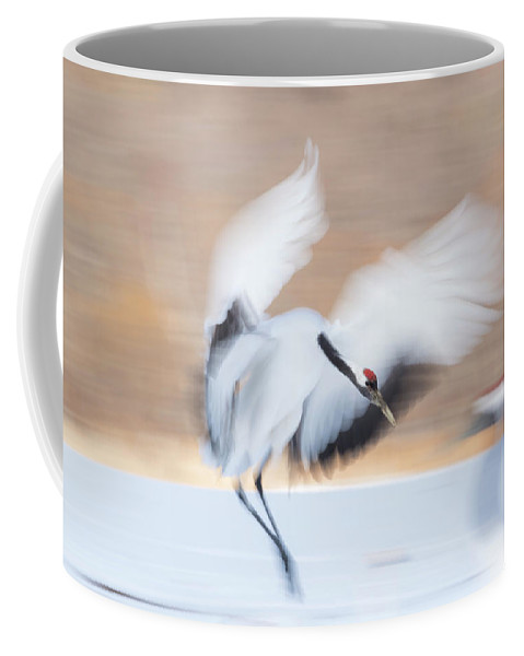 Cranes Coffee Mug featuring the photograph Red Crowned Crane In Kushiro by Yoshiki Nakamura