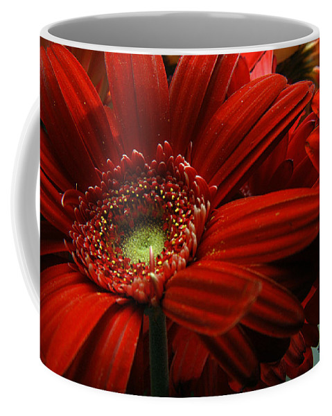Clay Coffee Mug featuring the photograph Red Floral by Clayton Bruster
