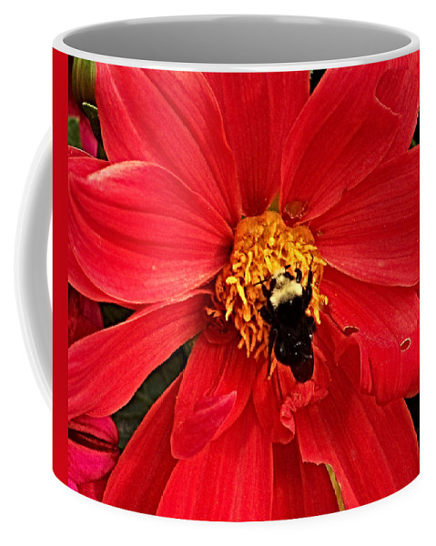 Flower Coffee Mug featuring the photograph Red Flower And Bee by Anthony Jones