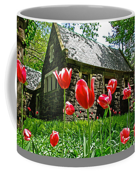 Red Coffee Mug featuring the photograph Red Flowers In Central Park by Zal Latzkovich