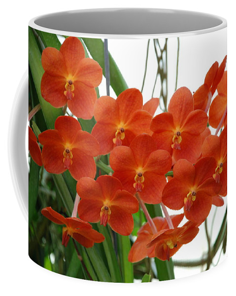 Macro Coffee Mug featuring the photograph Red Flowers by Rob Hans
