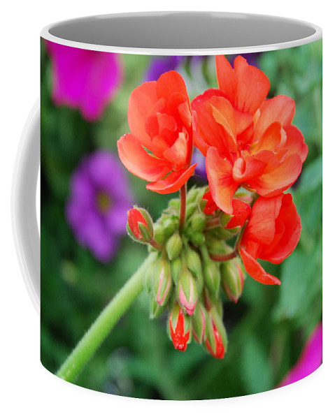 Flowers Coffee Mug featuring the photograph Red Fresh Geraniums by Ee Photography