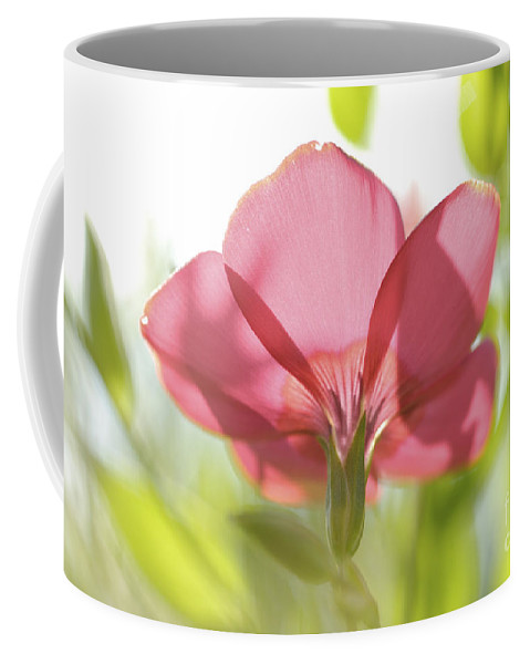 Red Coffee Mug featuring the photograph Red Garden Poppy by PhotoStock-Israel