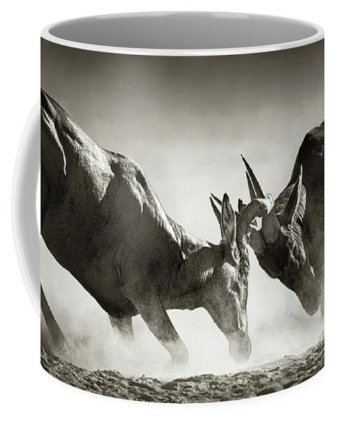 Hartebeest Coffee Mug featuring the photograph Red Hartebeest Dual In Dust by Johan Swanepoel